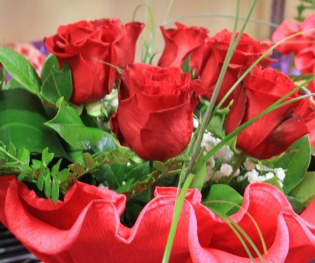 """Día de la Madre """"1º domingo del mes de Mayo"""". Como cuidar las flores en casa"""