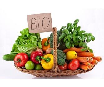 Problemas de nutrición: Servicios de Dra. Lourdes Barrenetxea