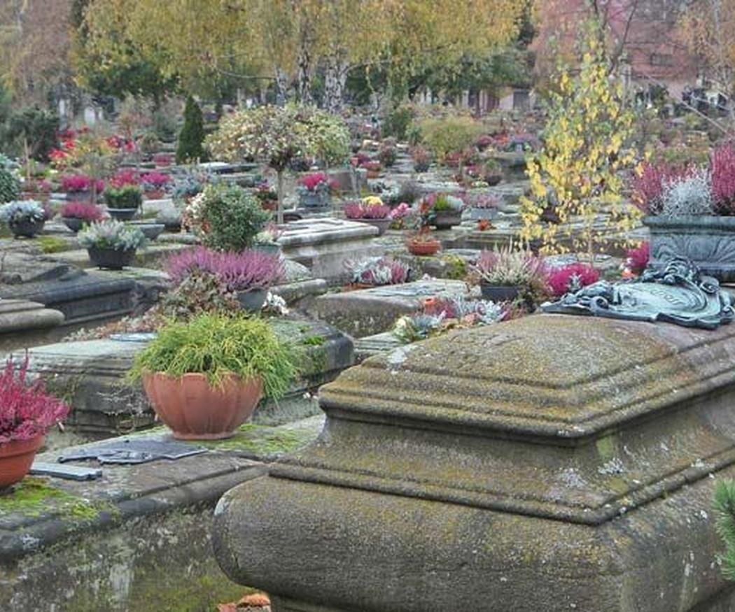 Diferencias entre nicho, tumba y panteón