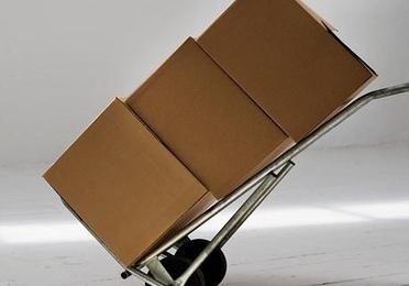 Transporte y ordenación de archivos