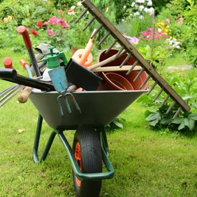 Cómo simplificar el mantenimiento del jardín