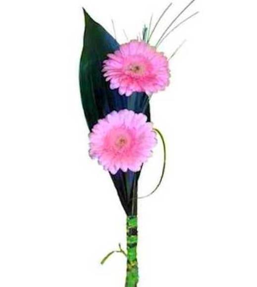 Gerberas naturales : Catálogo de Regalos de Floresdalia.com