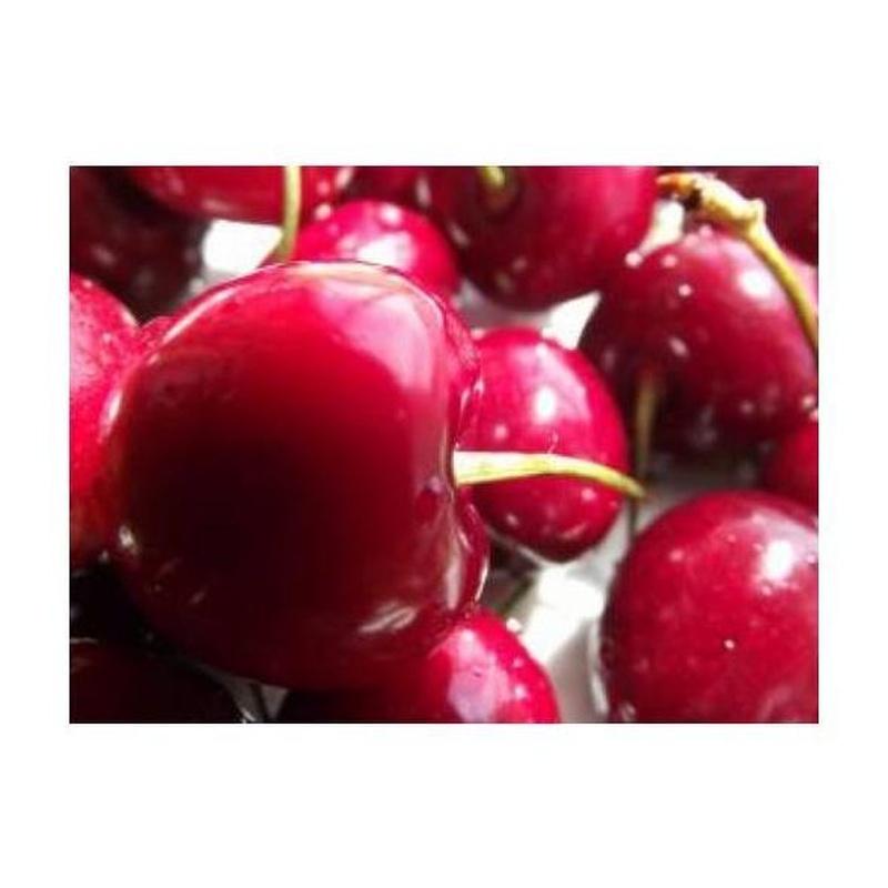 Cerezas: Productos de Mundifruit