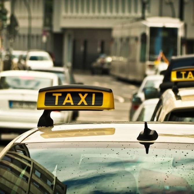 ¿Sabes cómo se consigue una licencia de taxi?