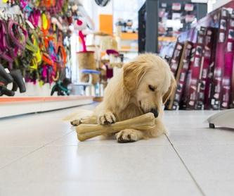 Accesorios para mascotas: Servicios de Nueva Enseñanza Escuela Canina