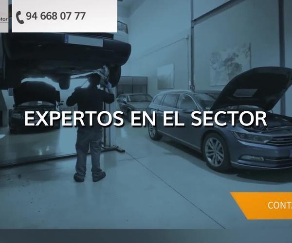 Taller mecánico multimarca en Getxo | Aldaisa Motor