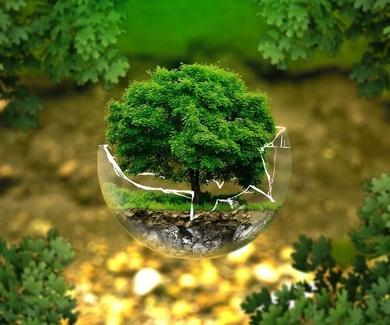 Titulación en medio ambiente