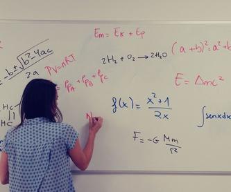 Preparación para EBAU y pruebas de acceso: Servicios de Academia Pitágoras