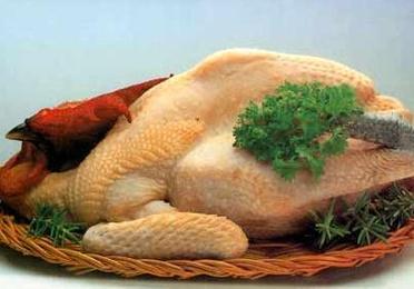 Pollo amarillo