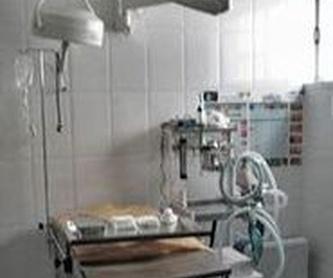 TIENDA Y COMPLEMENTOS: Servicios y tratamientos de Centro  Veterinario Kukume