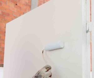 Trabajos de pintura en Barcelona y Hospitalet de Llobregat