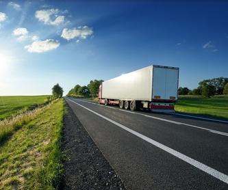 Transporte FTL. Cargas parciales: Servicios de Suso Transporte y Logística Internacional, S.L.