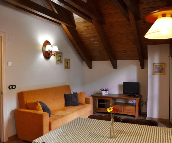 Salón apartamento Ordesa.