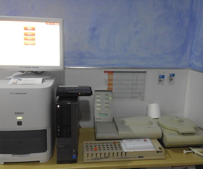 Máquina de análisis