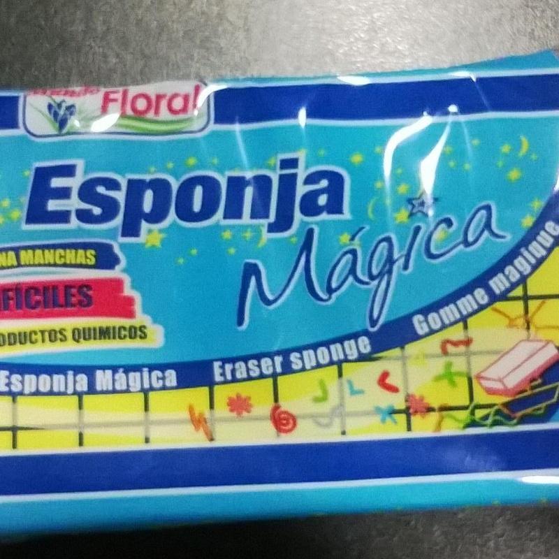 ESPONJA MAGICA 1 UNID: SERVICIOS  Y PRODUCTOS de Neteges Louzado, S.L.
