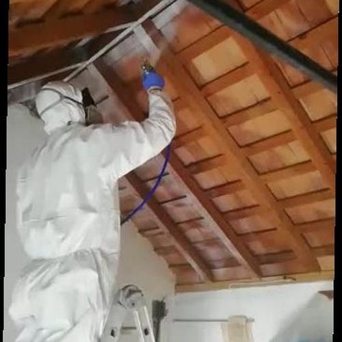 Tratamiento contra silófagos de la madera mediante impregnación