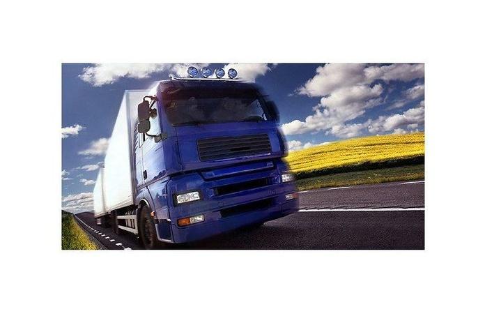 Transporte nacional e internacional de cargas completas: Servicios de Transportes Mitxelena
