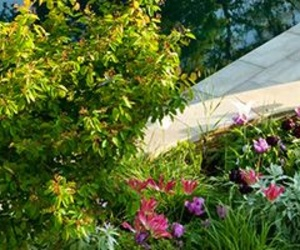 Servicios de jardinería en Barcelona