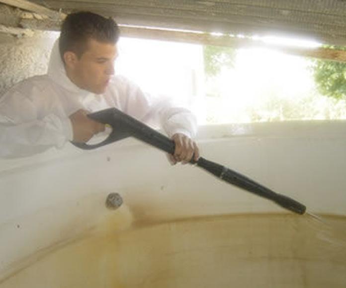 Desinfecciones: Servicios de G. De La Fuente