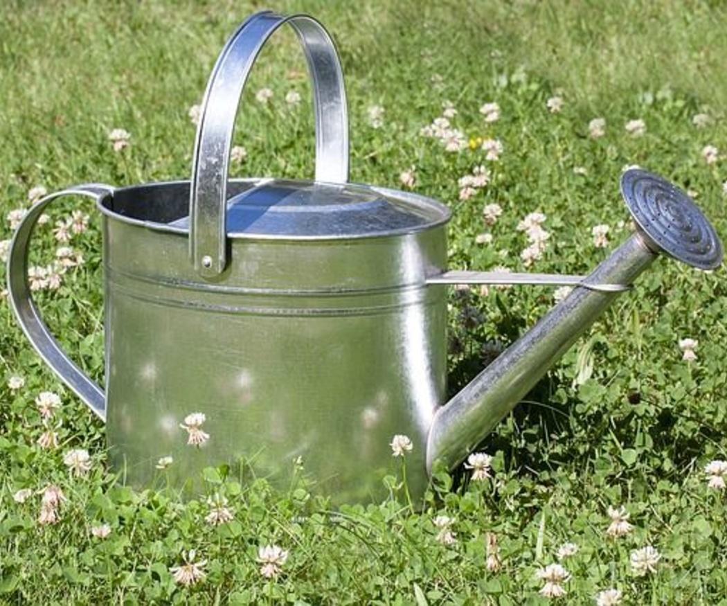 Jardines listos para recibir a la primavera (II)