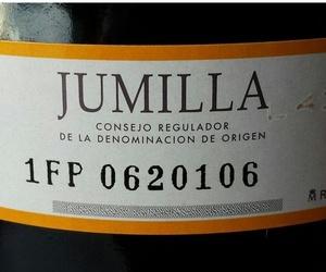 VINO DE JUMILLA ESPECIAL PARA TINTO DE VERANO Y SANGRÍA