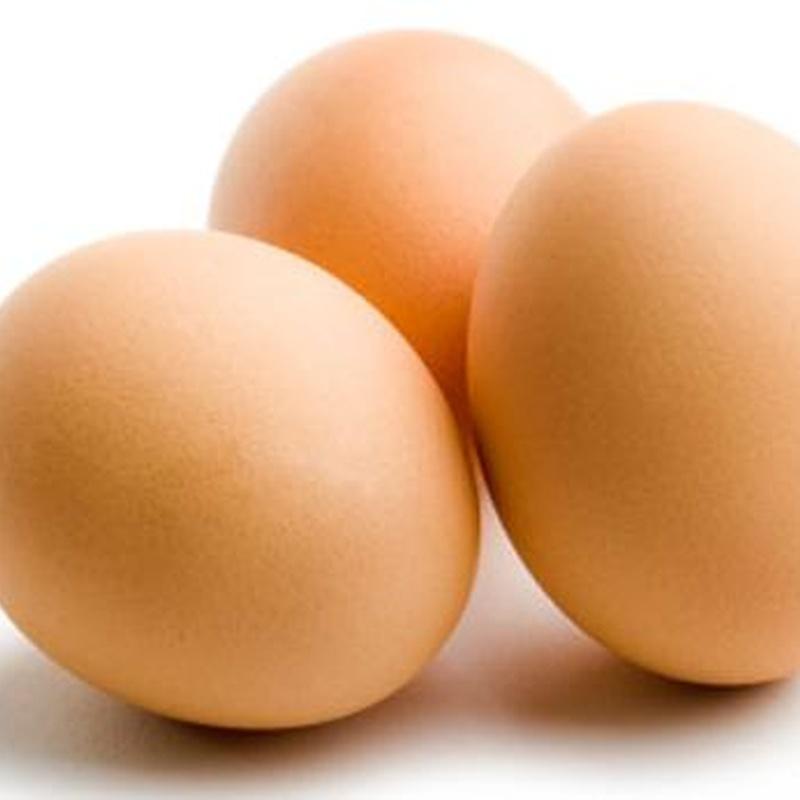 Huevos: Catálogo de Jorge Ribes