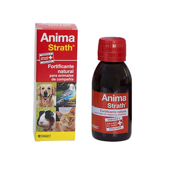 Anima strah fortificante natural Stangest Pienso Express