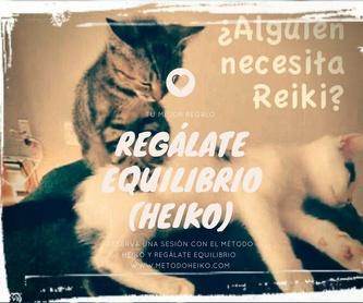 Reiki Ryoho: tercer nivel - Okuden: Método HEIKŌ de Método  HEIKŌ