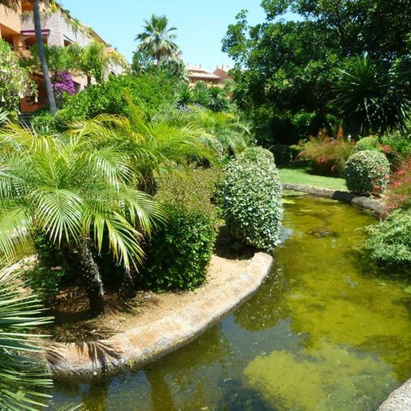 Mantenimiento de comunidades y jardines: Viveros de jardinería de Esspora