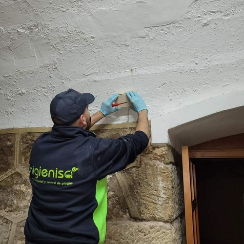 Tratamiento para eliminar termitas con cebo SentriTech
