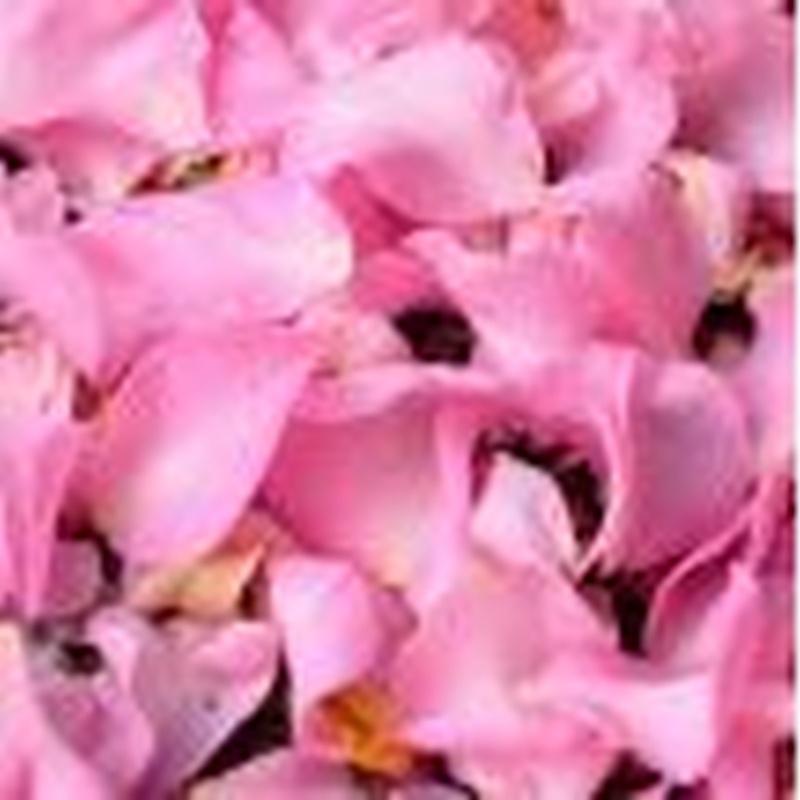 Ritual corporal rosa de Bulgaria: Servicios de OR'S Cosmetics