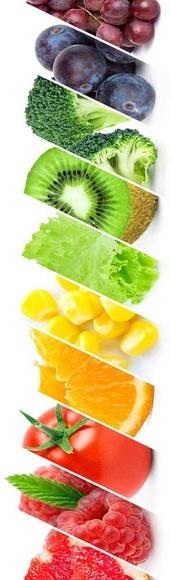 Tests de alimentación: Catálogo de Centro de estética Saludable