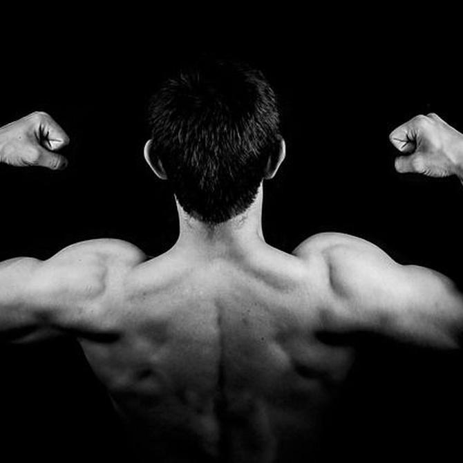Las diferencias entre tonificar y definir músculo