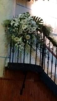 Comprar flores Logroño