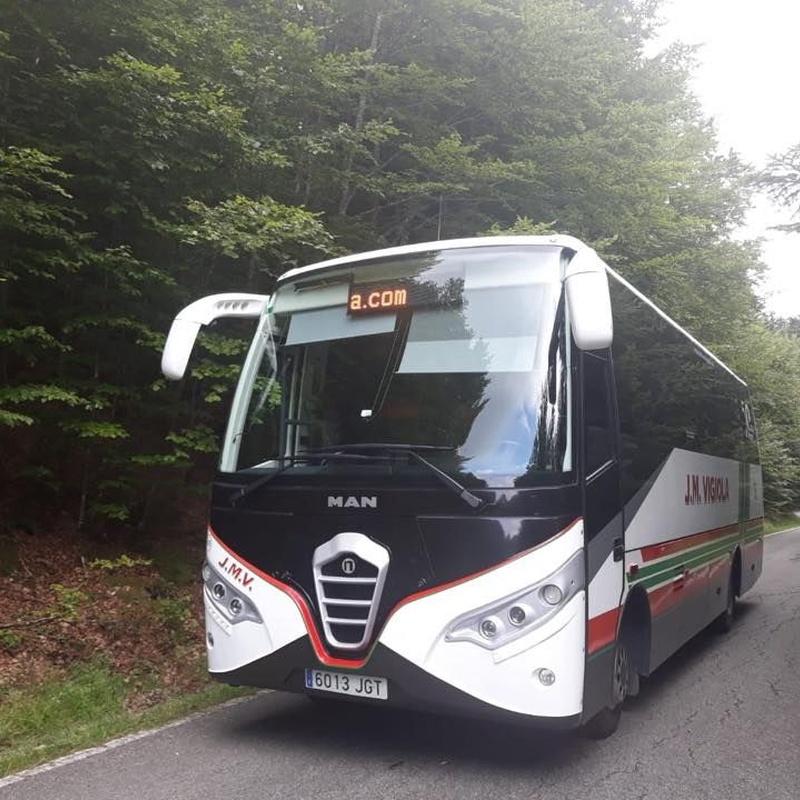 Bus 37 plazas: Servicios de J. M. Vigiola