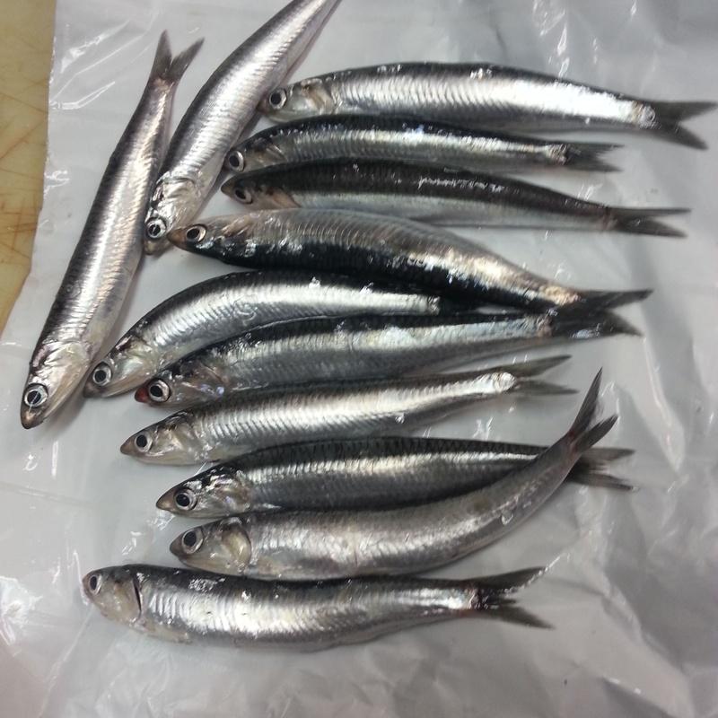 Pescados: Carta de Taberna Unai