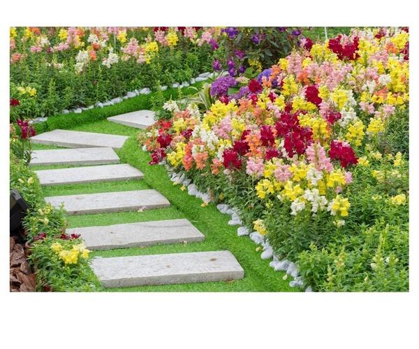 Mantenimiento de jardines en Jaén y en Málaga