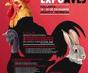 EXPOSICIÓN DE AVES EN GALLARTA
