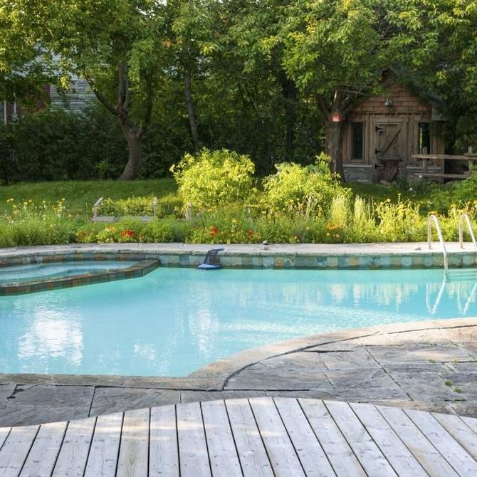 Cómo controlar las algas en la piscina