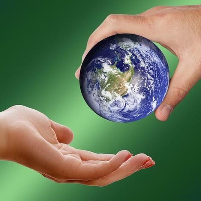 Cómo favorecen las energías renovables en el medio ambiente