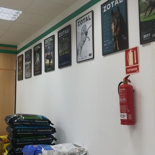 Alimentación para mascotas en Trujillo