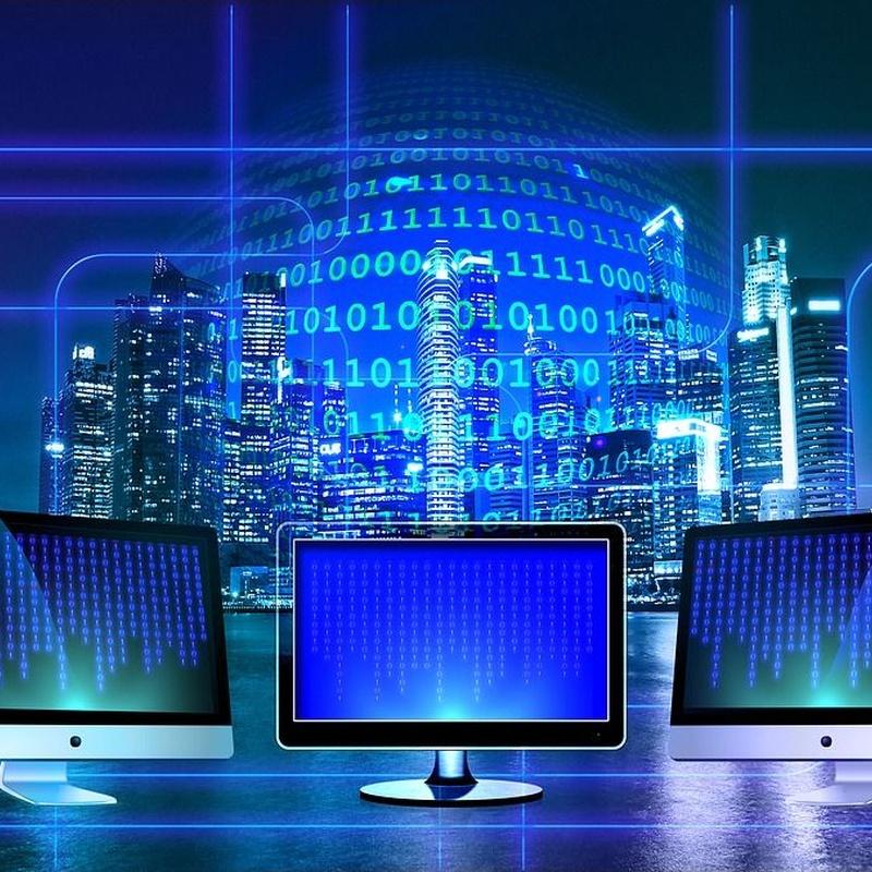 IP VPN MPLS: Servicios de Telesa