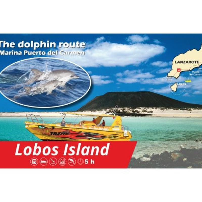 Isla de Lobos and the dolphins route: Excursions de Lanzarote Sea Tours