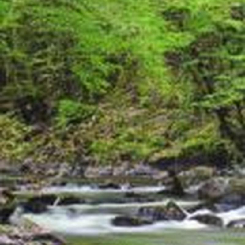 Pozos de agua: Pozos y Bombeos de Pozos y Bombeos La Almudena, S.L.