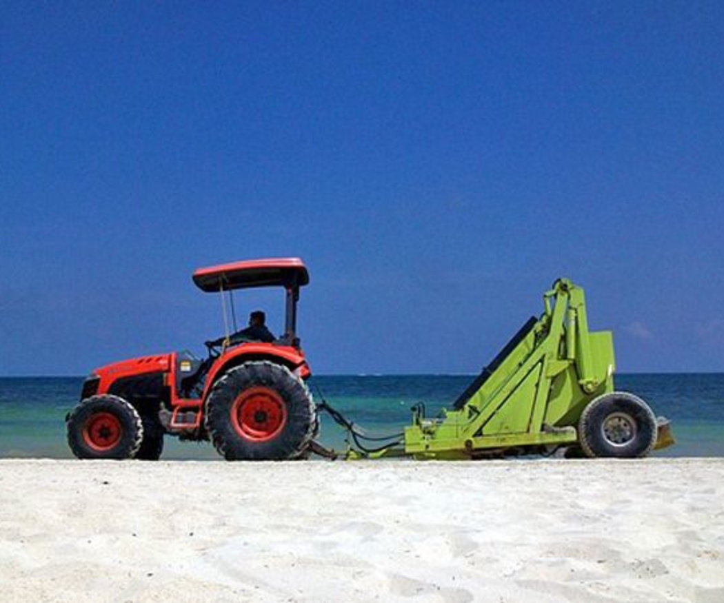 El riesgo de la limpieza de playas