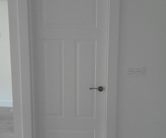 Cambio de puertas Vitoria