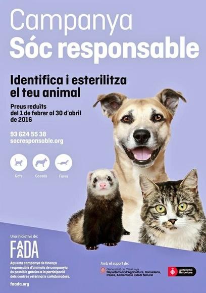 CAMPAÑA SOC RESPONSABLE