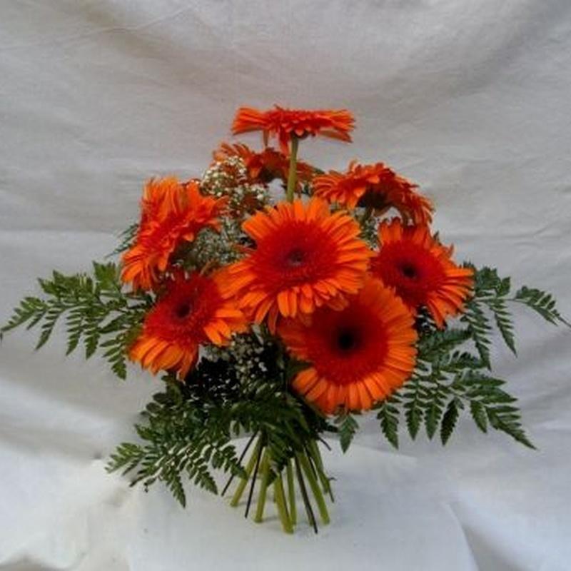 Guadarrama: Productos de Flores Madrid