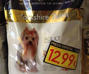 Advance Yorkshire adulto 1,5 Kg.