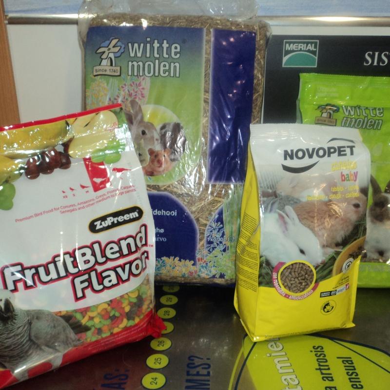 Alimentos otros animales: Servicios de Clínica Veterinaria Rocafort
